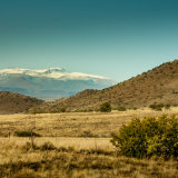 Snow on Barkly East Mountain-2662