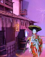 Fuji girl in a cheerful mood 2