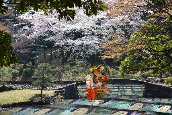 Samurai warrior is riding in a garden
