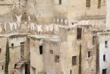 102-tannery fez