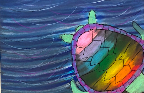 soft pastel turtles