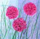 'Allium Dazzle' Original Framed Tissue Paper Collage. SOLD.