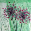 'Alliums Alive' Original Tissue Paper Collage On Canvas. SOLD
