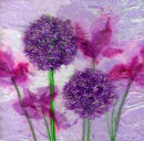 'Allium Dream' Original Tissue Paper Collage On Canvas. SOLD