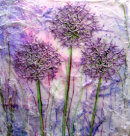 'Allium Magic' Original Tissue Paper Collage on canvas SOLD