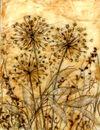 'Amber Joy,' original Tissue paper collage on canvas,SOLD.