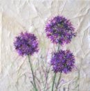 'Love Allium' Original Tissue Paper Collage On Canvas. SOLD.