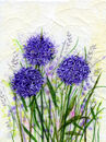 'Ashgillside Alliums,' Original tissue paper collage on canvas,' SOLD
