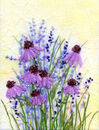 'Ashgillside Echinacea,' Original tissue paper collage on canvas,' SOLD