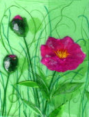 'Peony Wonder' Original Tissue Paper Collage On Canvas. SOLD