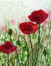 'Poppies ...just poppies,' original tissue paper collage on canvas, SOLD.