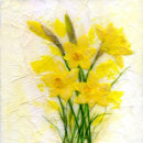 Daffodil Delight SOLD