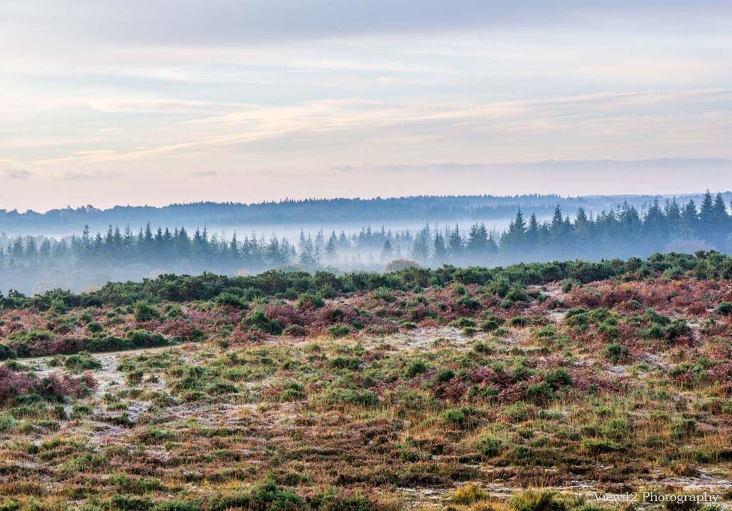 Misty Morning, Ashley Range