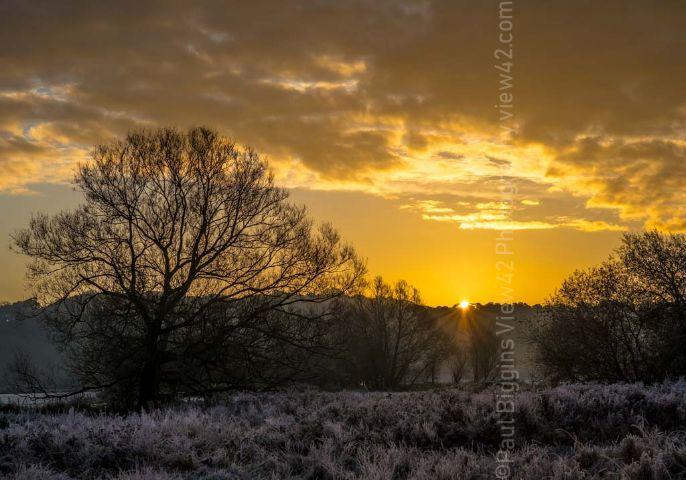Half a Yellow Sun. Winter sunrise over Burgate Manor Farm