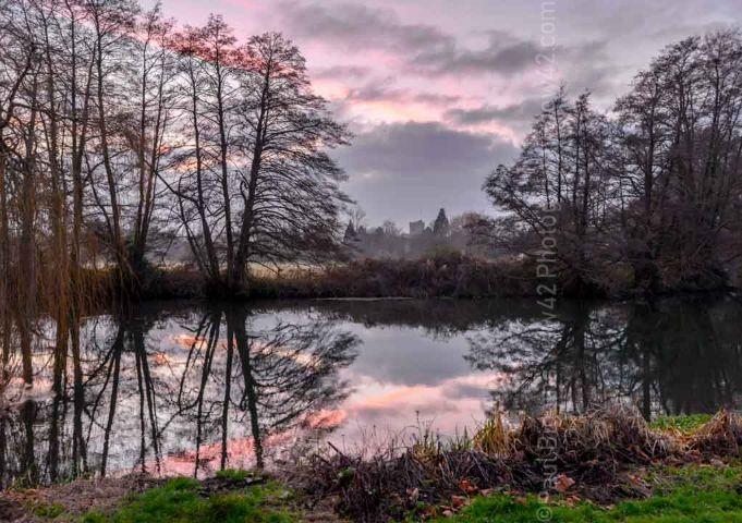 Fordingbridge purple river reflection trees print