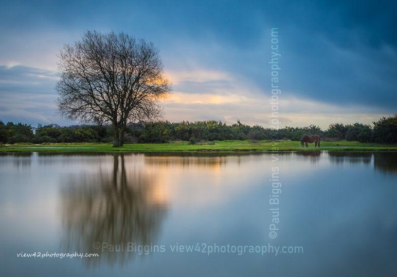 """Janesmoor Pond, 16"""" x 12"""" incl. mount: £20"""