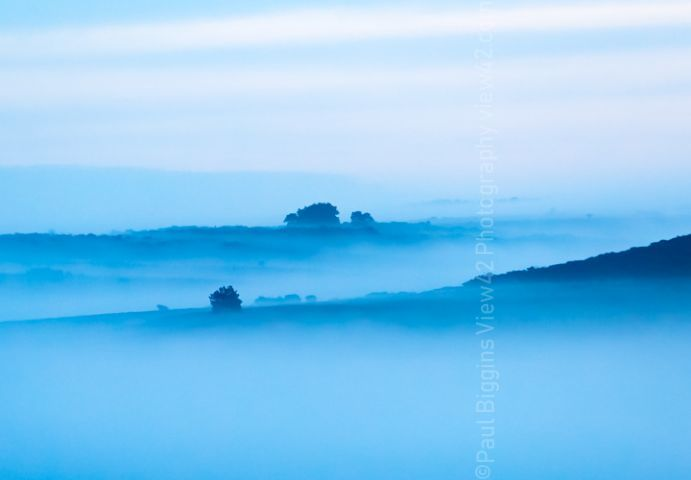 misty new forest blue mist print
