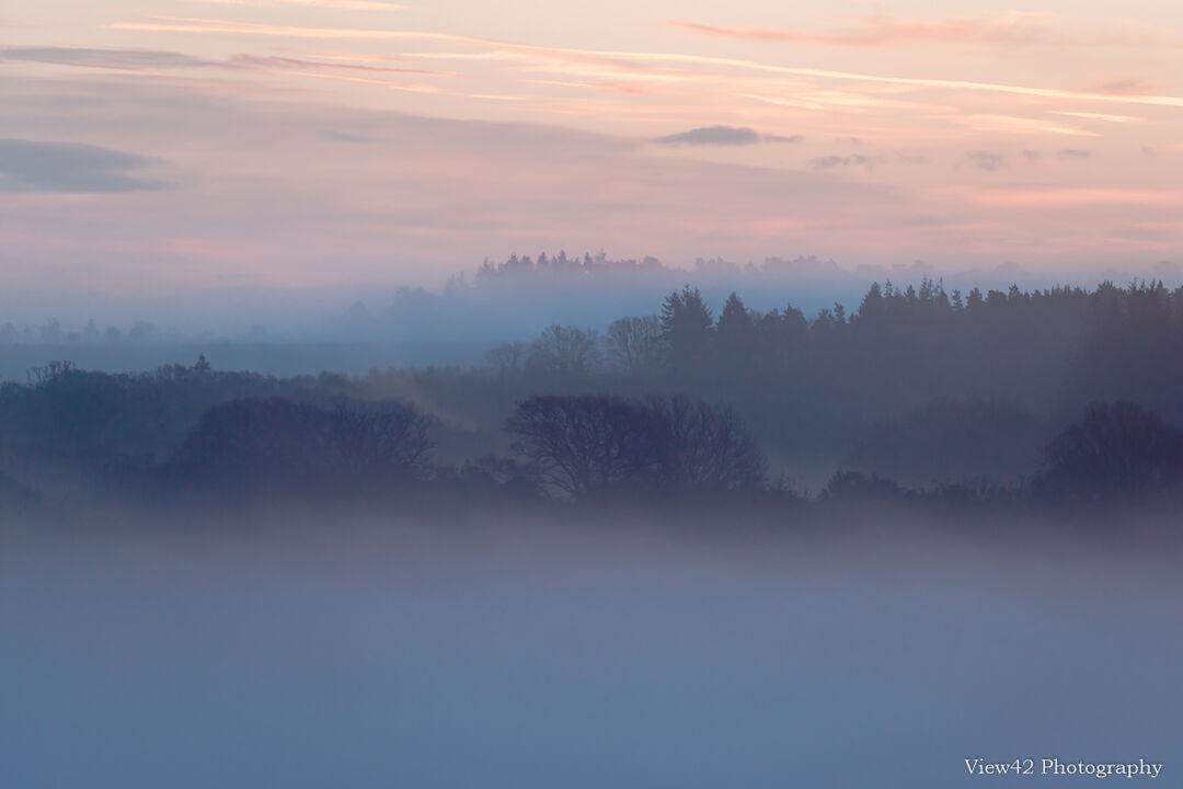 Misty Morning, Ashley Walk