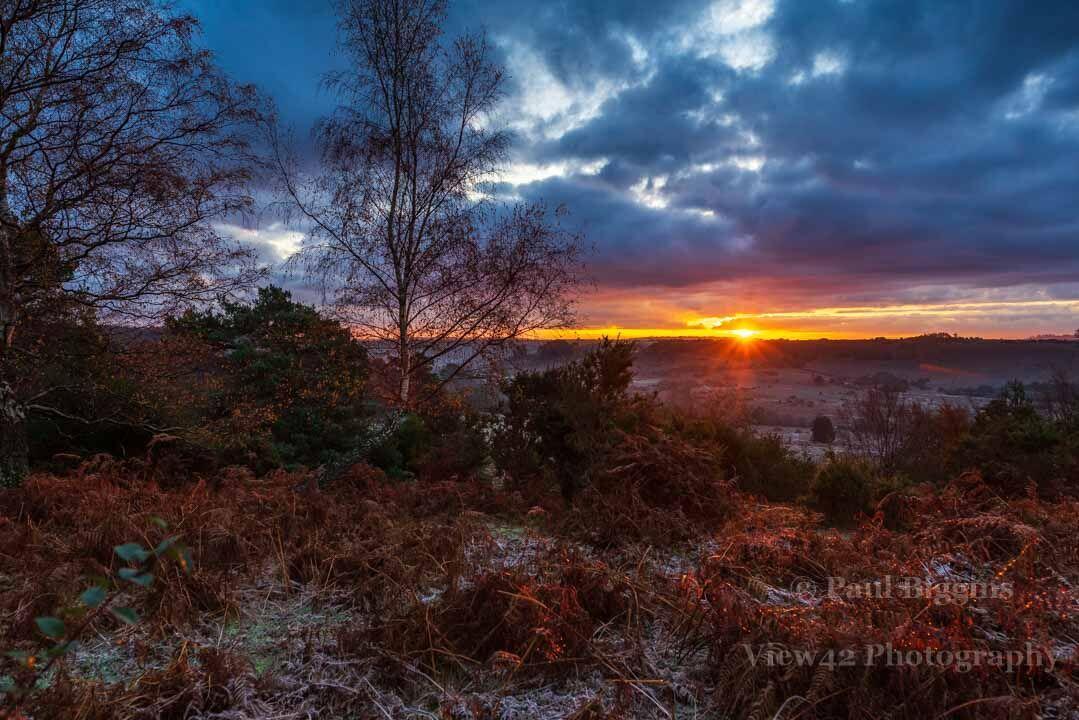 Hale Purlieu Sunrise