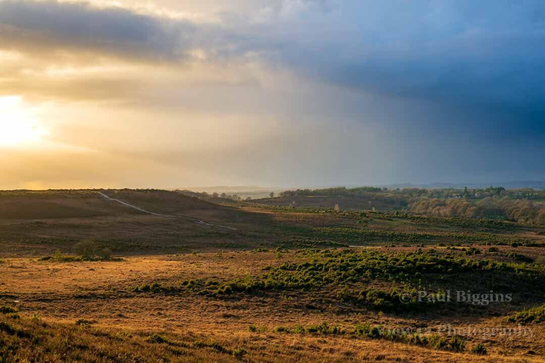 Godshill Landscape
