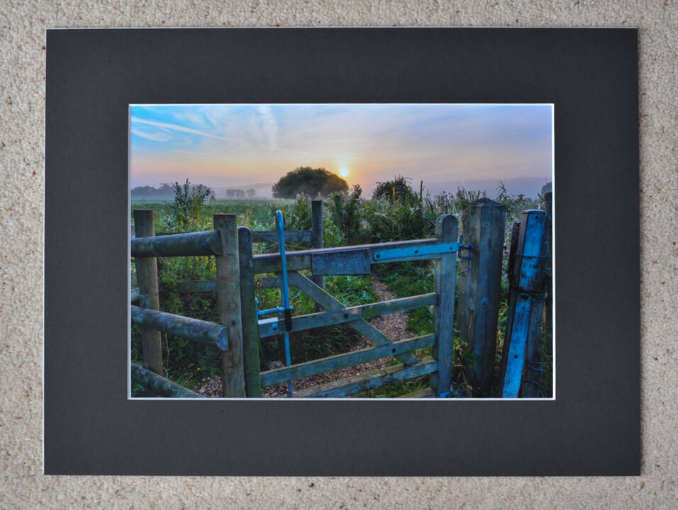 "Gateway to The Morning, Burgate Manor Farm, A4 print with 16"" x 12"" mount. £20"