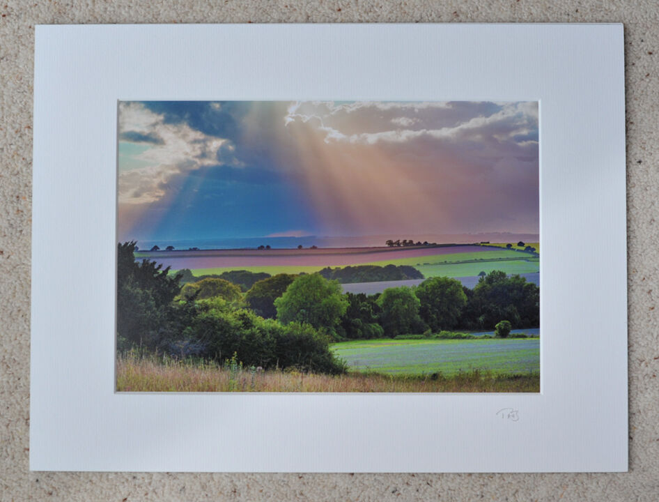 """Rolling Wessex, Breamore, A4 print with 16"""" x 12"""" mount. £20"""