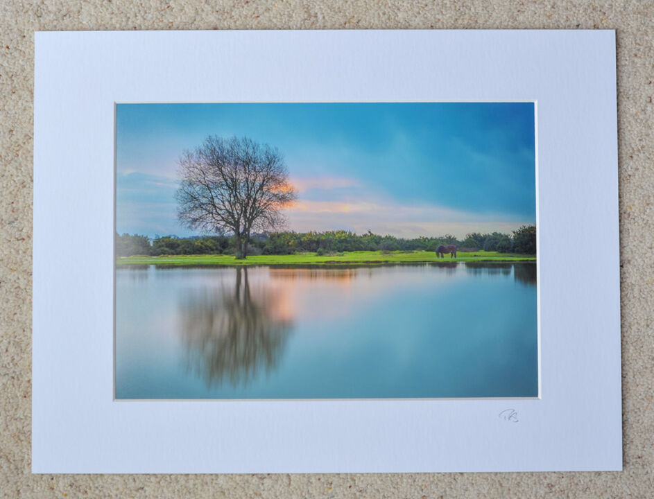 "Janesmoor Pond, A4 print with 16"" x 12"" mount. £20"