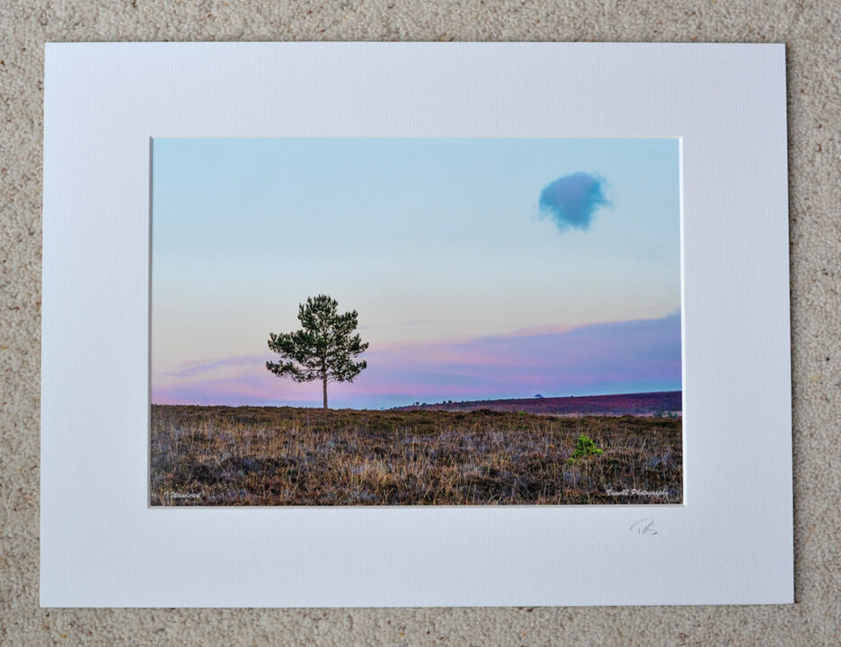 """Lonely as a Cloud, A4 print with 16"""" x 12"""" mount. £20"""