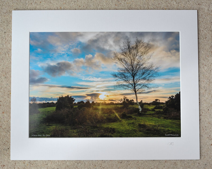 "A Winter Walk on Gorley Common, A3 print with 20"" x 16"" mount. £20"