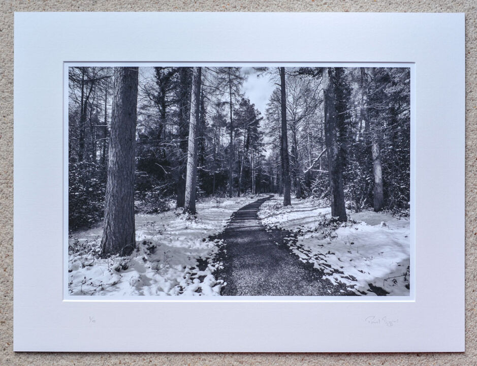 """Snow at Godshill Wood (b&w), A3+ print with 24"""" x 18"""" mount, fine art paper, Limited Edition. £45"""