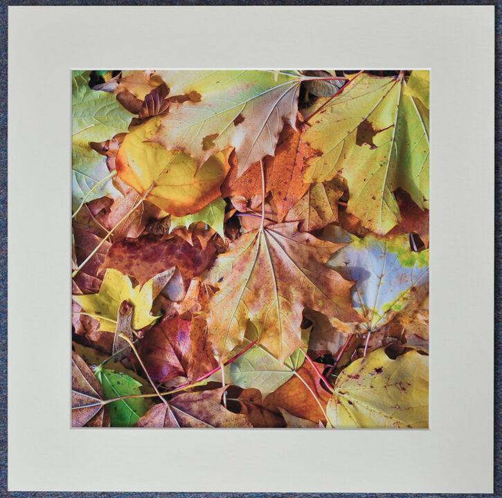 Fallen Autumn Leaves 2, 30cmx30cm print on 40cmx40cm mount. £24