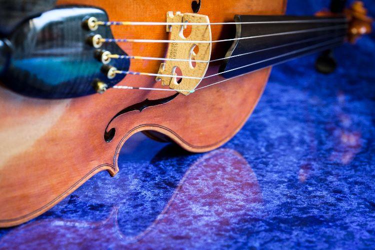 Acoustic Vio-5