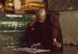 Monk Shwedagaon