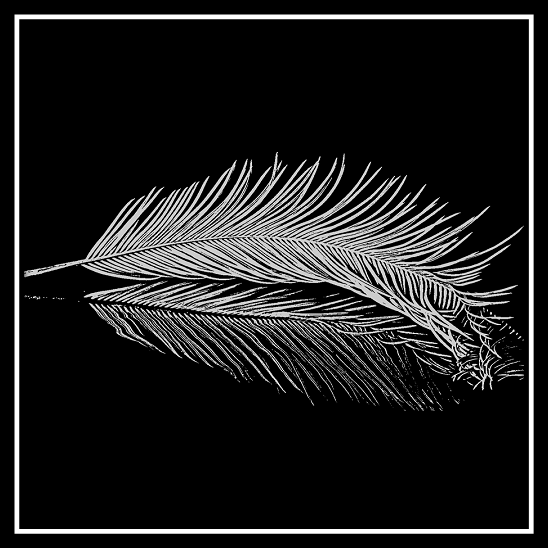 White Feather engraved on 20 cm x 20 cm Black Glass