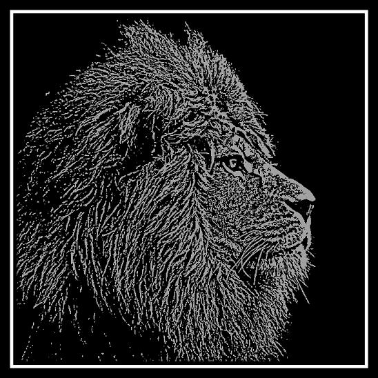 Profile Engraving of Male Lion Head on 20 cm x 20 cm Black Glass