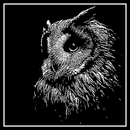 Engraving of Owl on 20 cm x 20 cm Black Glass