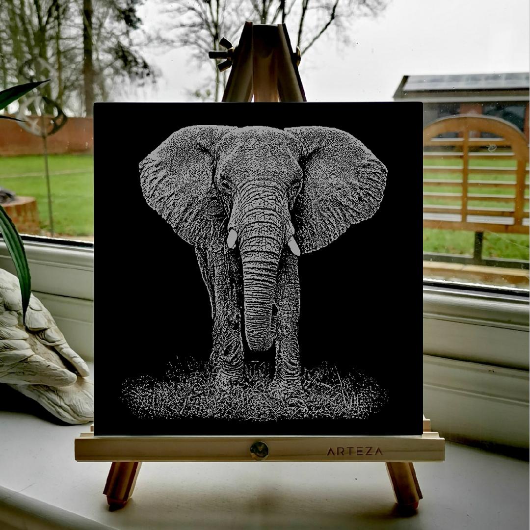 African Elephant - £99
