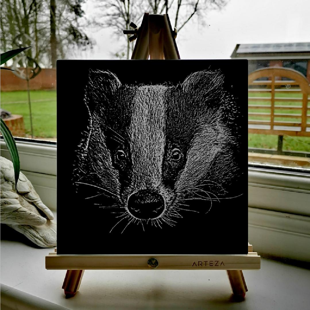 Badger - £99