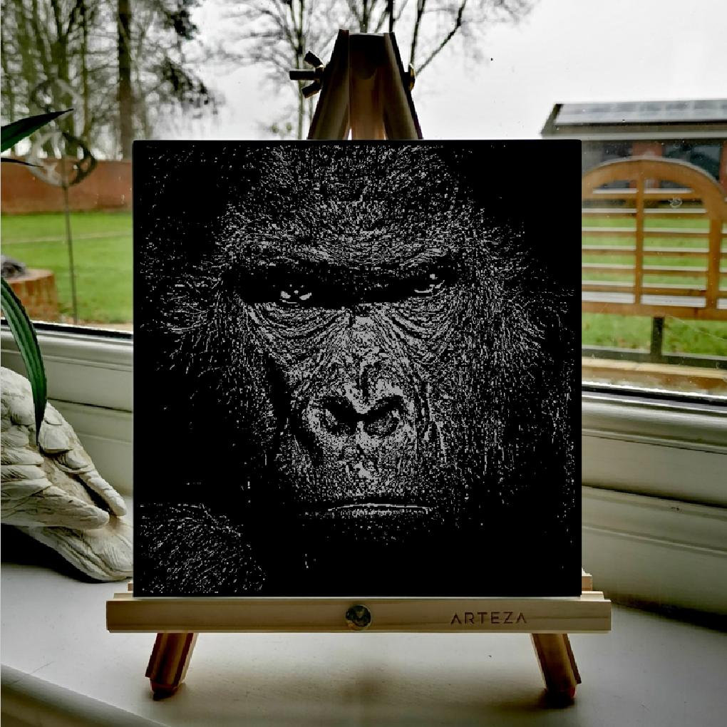 Kong - £99