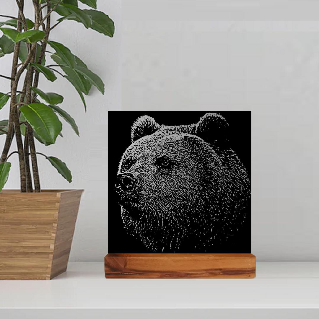 Black Bear - £99