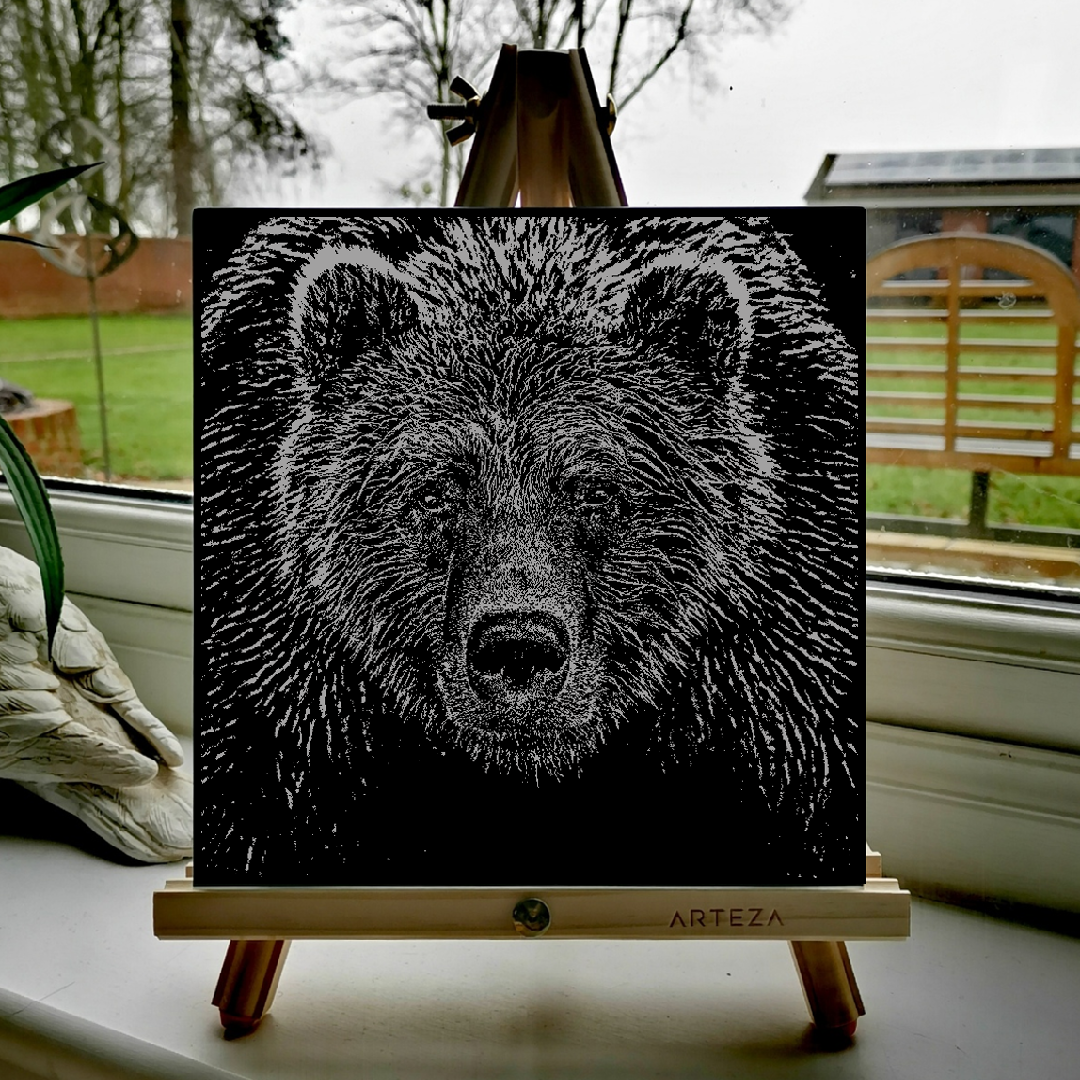 Grizzly Bear - £99