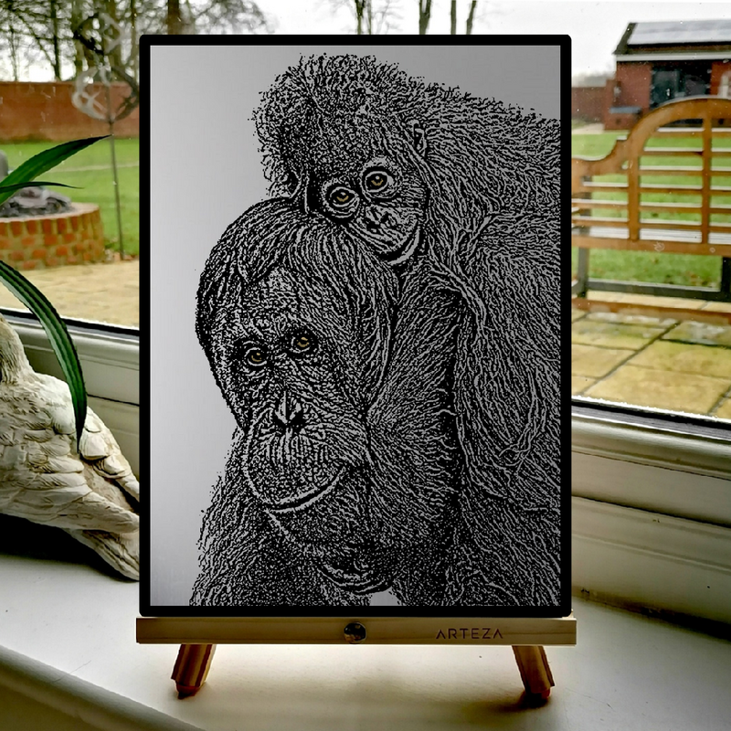 Mother and child Orangutan - £129