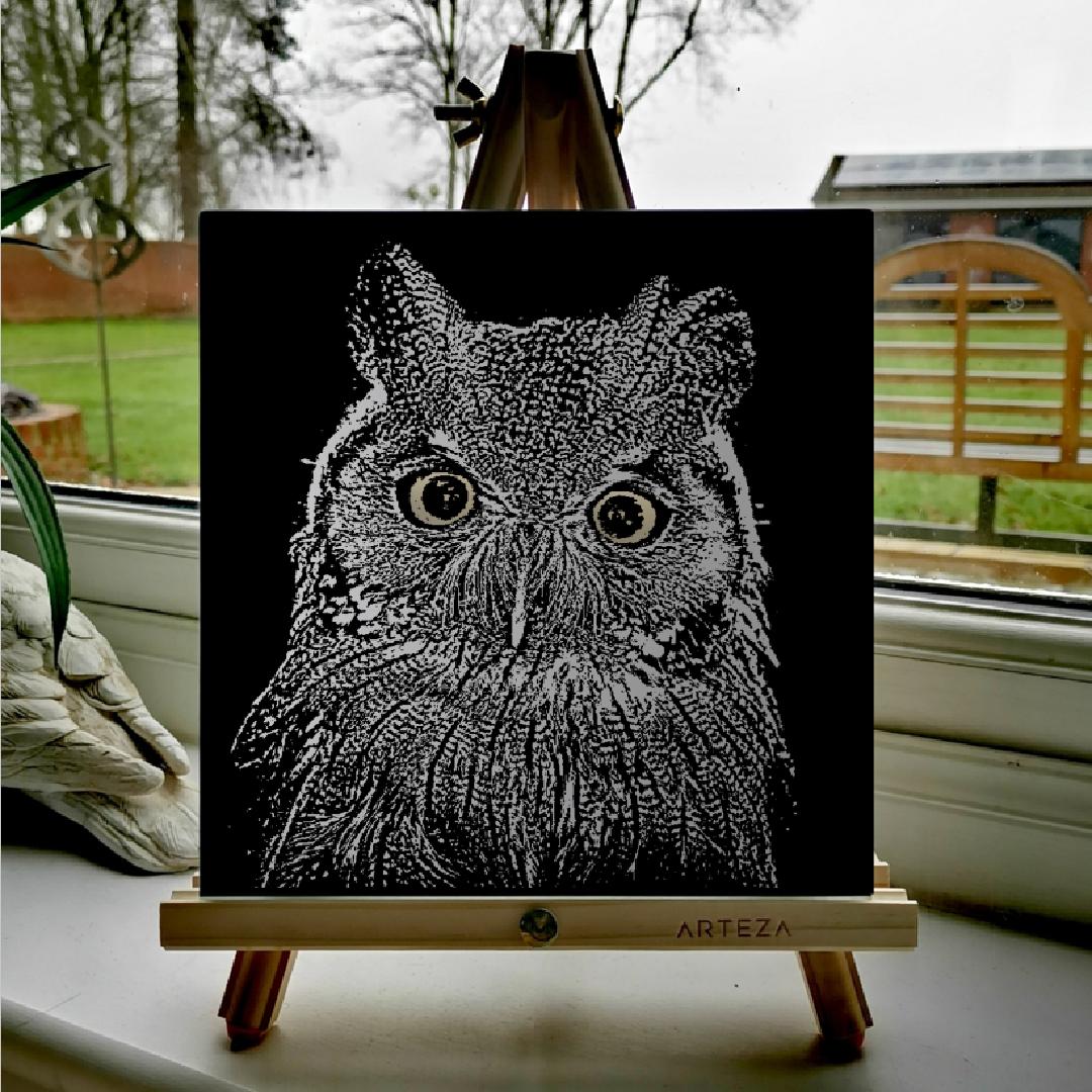 Owl - £99