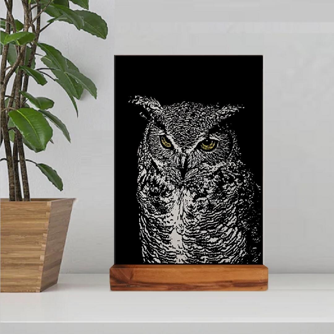 Owl - £129
