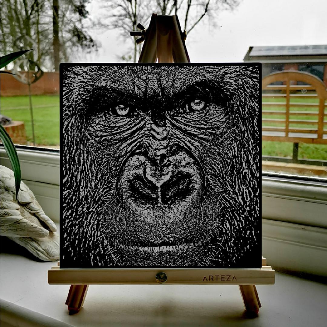 Congo - £99