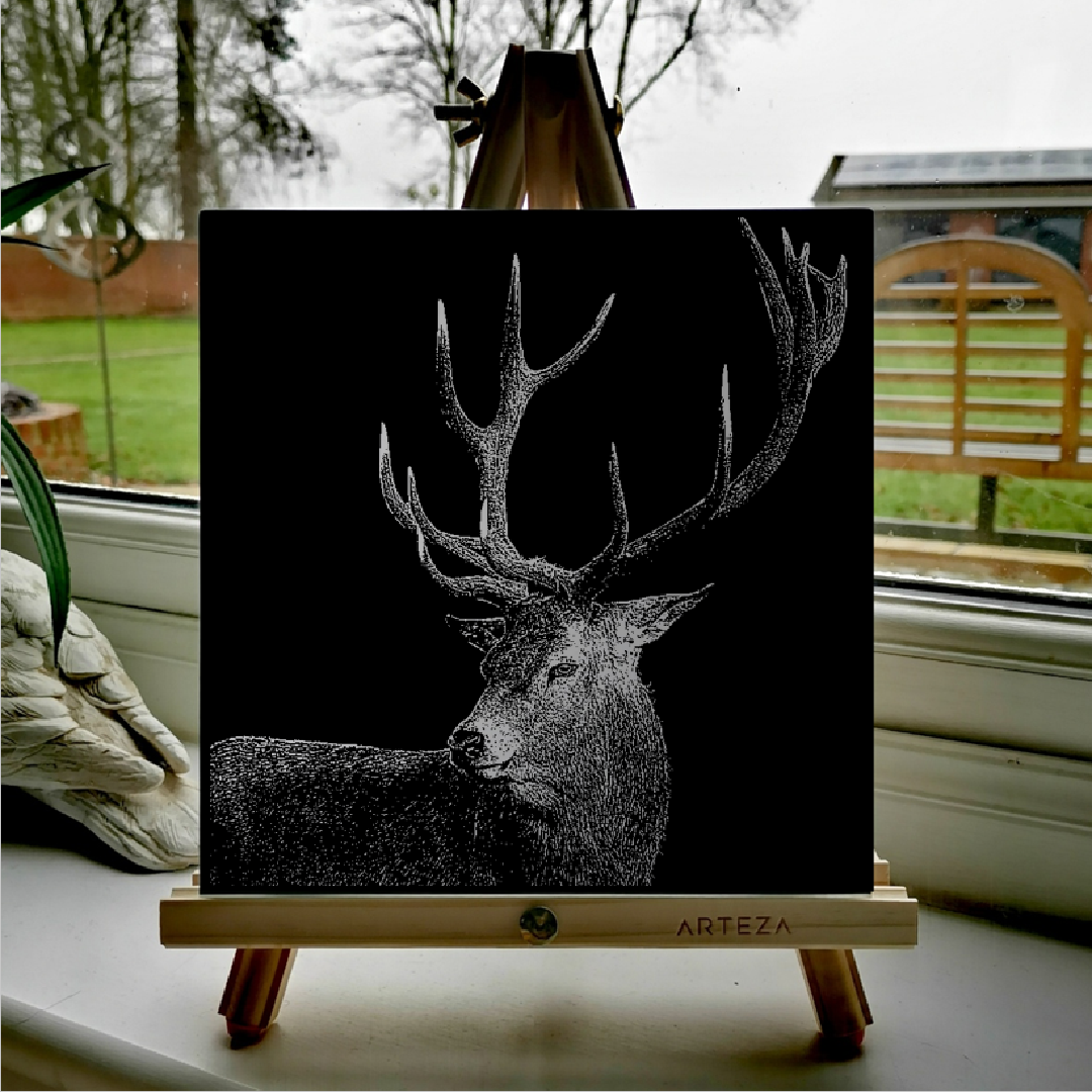 Stag - £99