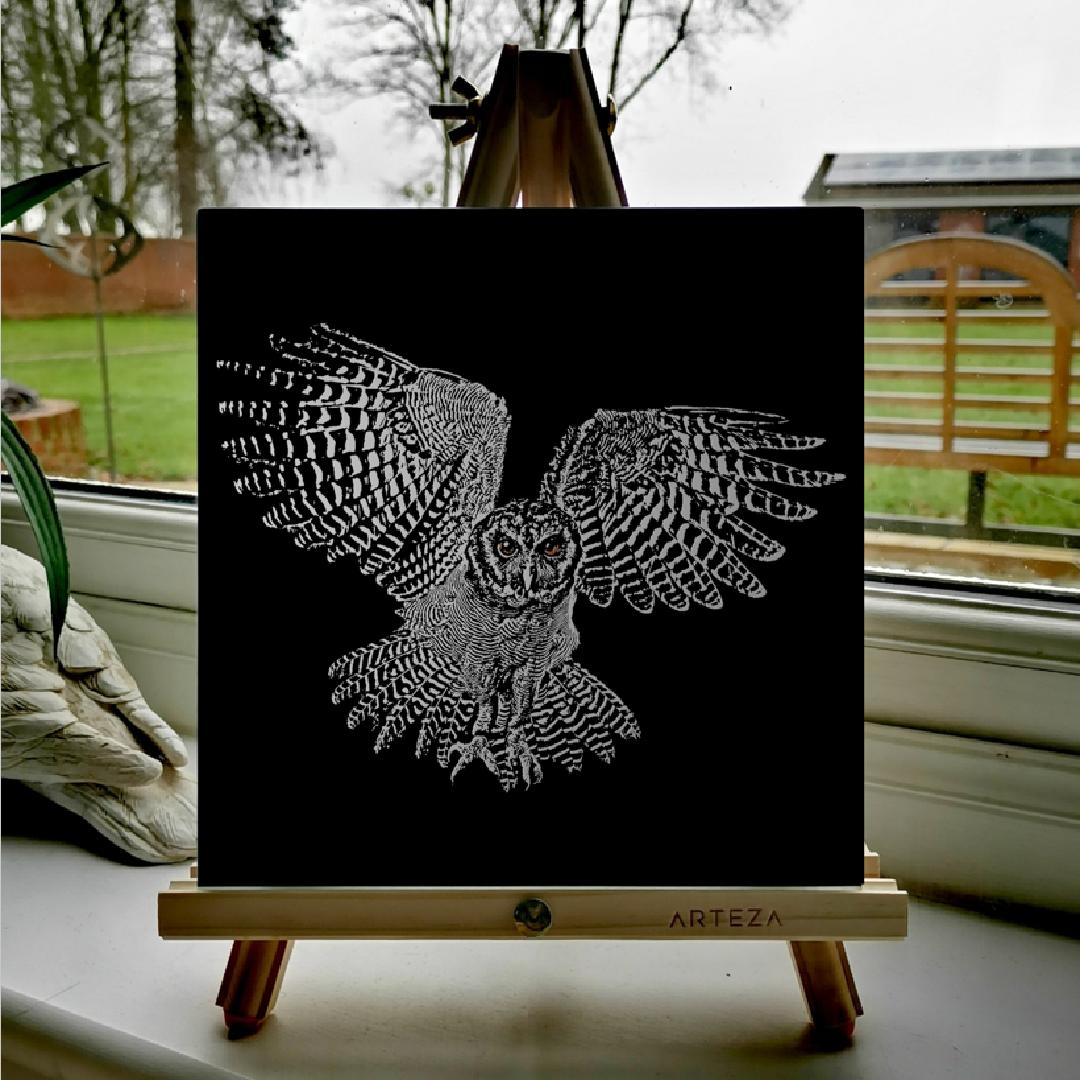 Tawny owl - £99