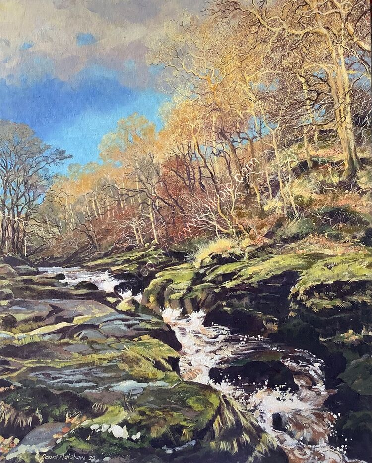 'STRID IN SPATE' BOLTON ABBEY NORTH YORKSHIRE