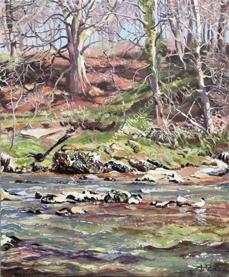'RUSHING RIVER LUNE' AT KIRBY LONSY