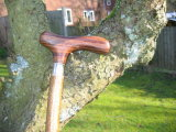 A derby handle made from Indian rosewood (also known as Sheesham)